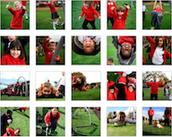 New Artificial Grass Fun Photos